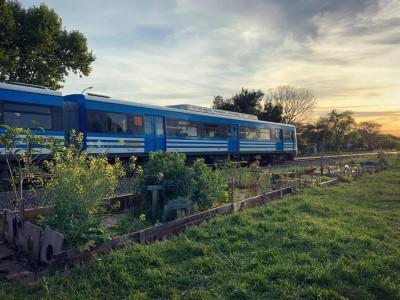 """01 de Diciembre-Se inauguró el """"Paseo de Plantas Nativas Yolanda Ortiz"""", en la Huerta Vecinal de Villa Pueyrredón_"""