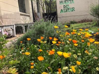 Jardines y huertas orgánicas